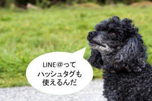 LINE公式アカウントの「タイムライン」の使い方や設定方法【タイムラインにハッシュタグを】