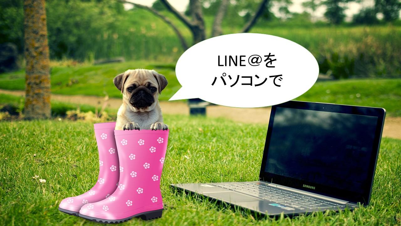 LINE(ラインアット)をPC(パソコン)で