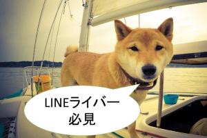 LINE公式アカウント(ラインアット)からLINELIVE(ラインライブ)へ集客【LINEライバー必見】