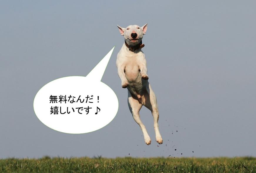 LINE公式アカウントは無料で作れるときいて喜ぶ犬