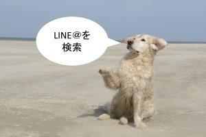 LINE公式アカウント(旧:ラインアット)を検索する5つの方法【豆知識も公開】