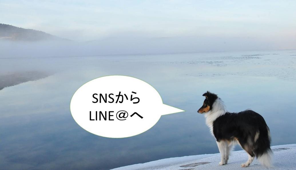 SNSからLINE@(ラインアット)へ