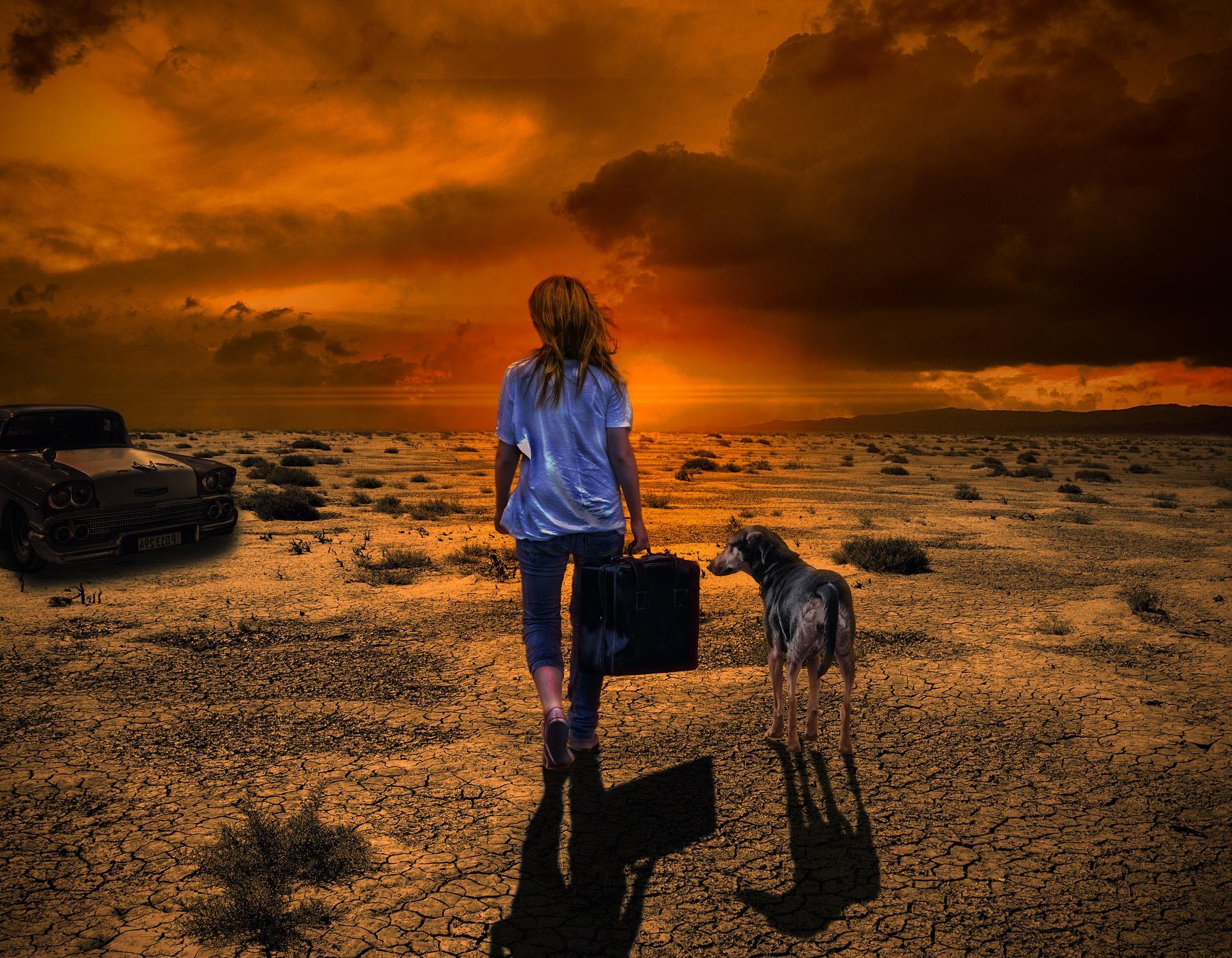 夕暮れと犬と少女