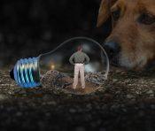 電球に閉じ込められた男とそれをみる犬