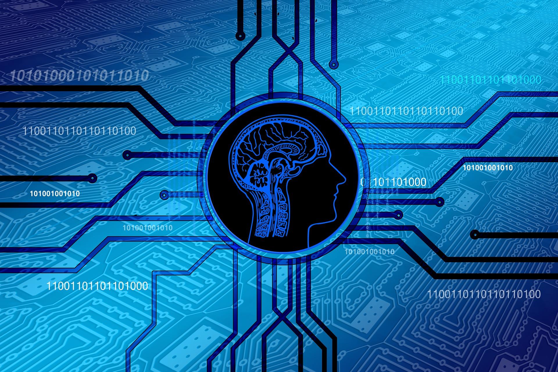 人間の脳の記憶